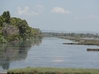 s-カラヴァスタ湿地01264.jpg