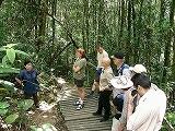 s-キナバル公園エコツーリズム.jpg