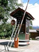 s-キナバル国立公園CIMG0024.jpg