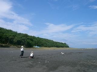 s-三保の松原2CIMG0557.jpg