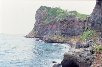 s-大バエ(生月町)西海NP.jpg