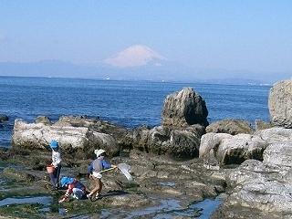 s-葉山海岸CIMG0127_2.jpg