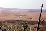 s-釧路湿原.jpg