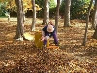 s-雑木林落ち葉かき0923.jpg