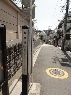 s-DSC00859.jpg