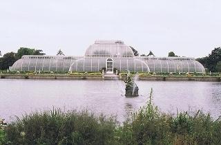 s-s1-キュー植物園CCI20140111(1).jpg